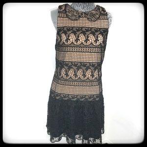 ALICE + OLIVIA DRESS BLK LACE W/NUDE UNDERNEATH 6